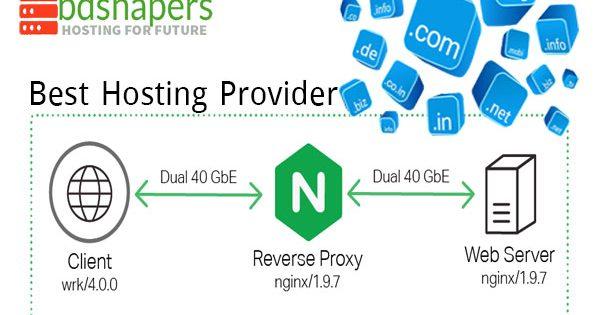 Best Hosting Provider-bdshapers