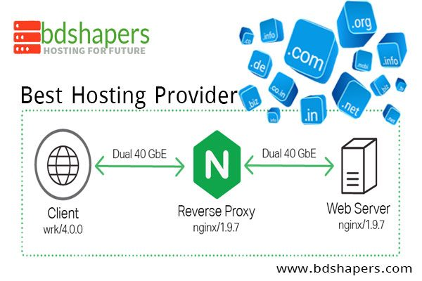 Best Hosting Provider-bdshapers